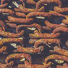 Old rusty chains by Alexander Nedviga