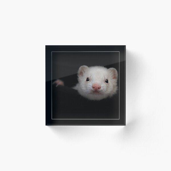 -005- Acrylic Block