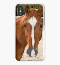 0221 Horse iPhone Case