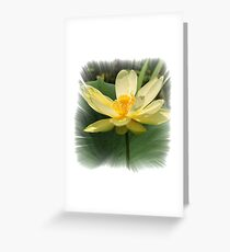 Yellow Water Lilly Greeting Card