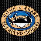 Zuhause döst der Hund von RichSkipworth