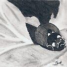 Ladybug by snowhawk