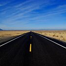 Road - Highway to no where by Despot