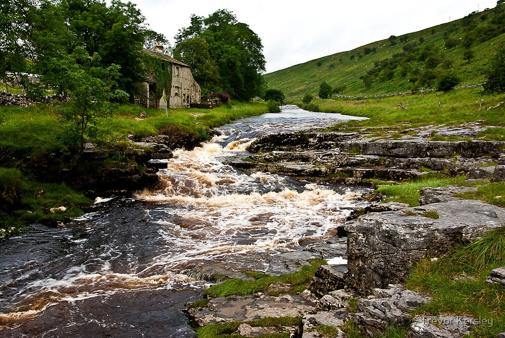 River Cottage  (River Wharfe) by Trevor Kersley