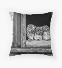 Little owl family at window Throw Pillow