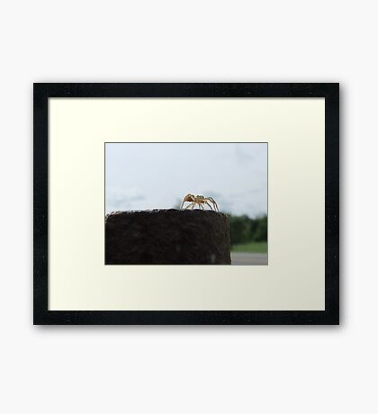Looking Across The Great Big World... Framed Print