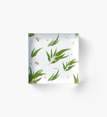Floral pattern of eucalyptus leaves and seeds Acrylic Block