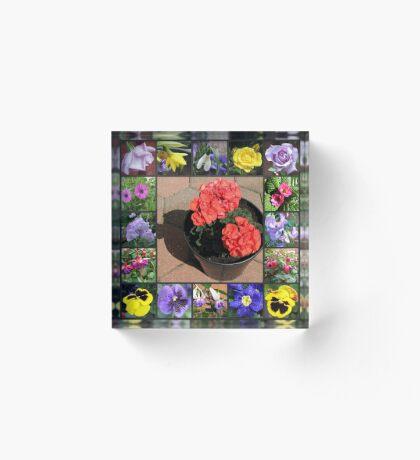 Sonnenschein und Duschen-Blumencollage Acrylblock