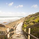 Stairway To Surfing Heaven by kwill