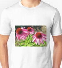 Pink and Purple Echinacea Cone Flower Macro T-Shirt