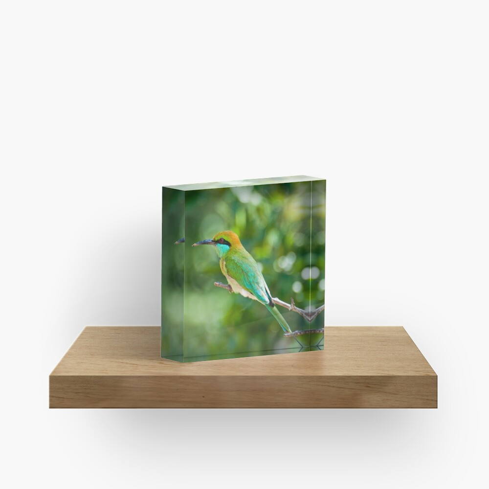 Green Bee-eater Acrylic Block