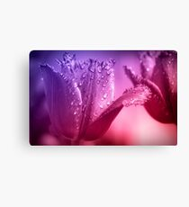 Tulips Flower Canvas Print