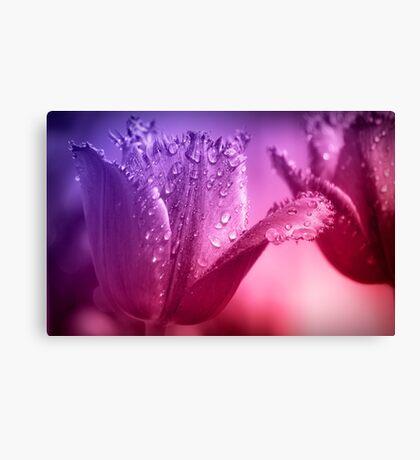 Tulips Flower Canvas Print
