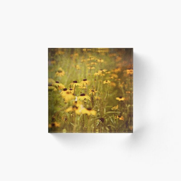 Black-Eyed Susan Flowers Acrylic Block