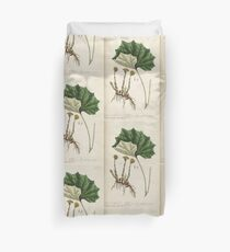 A curious herbal Elisabeth Blackwell John Norse Samuel Harding 1737 0522 Colts Foot or Poles Foot Duvet Cover
