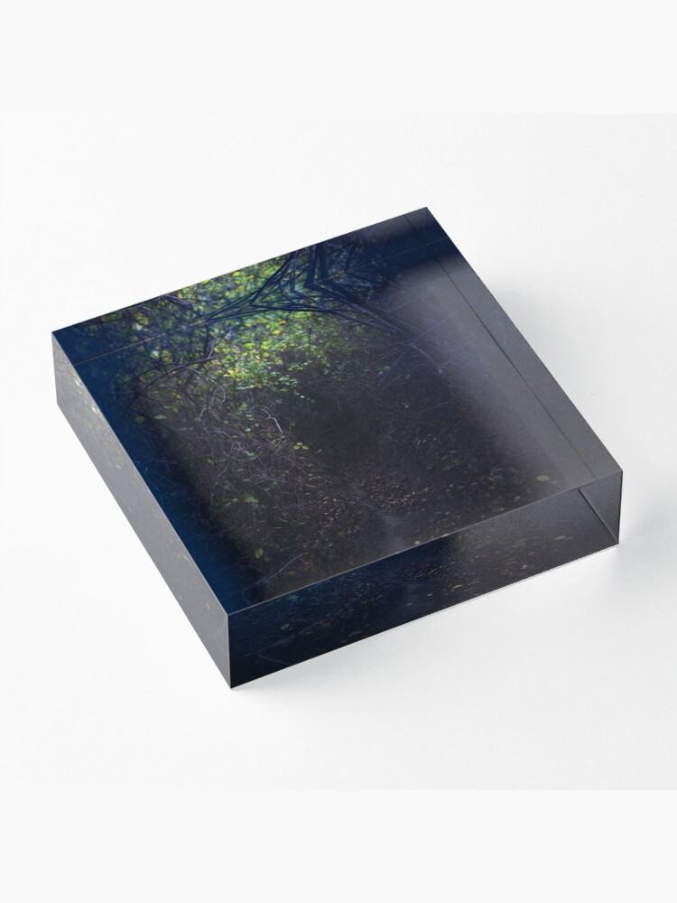 Alternate view of The Dark Thicket of Life Acrylic Block