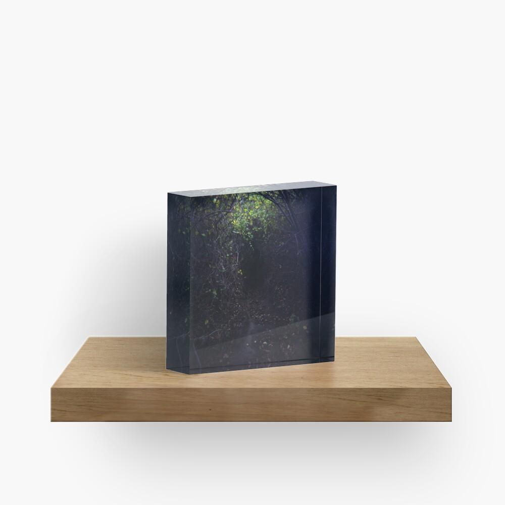 The Dark Thicket of Life Acrylic Block