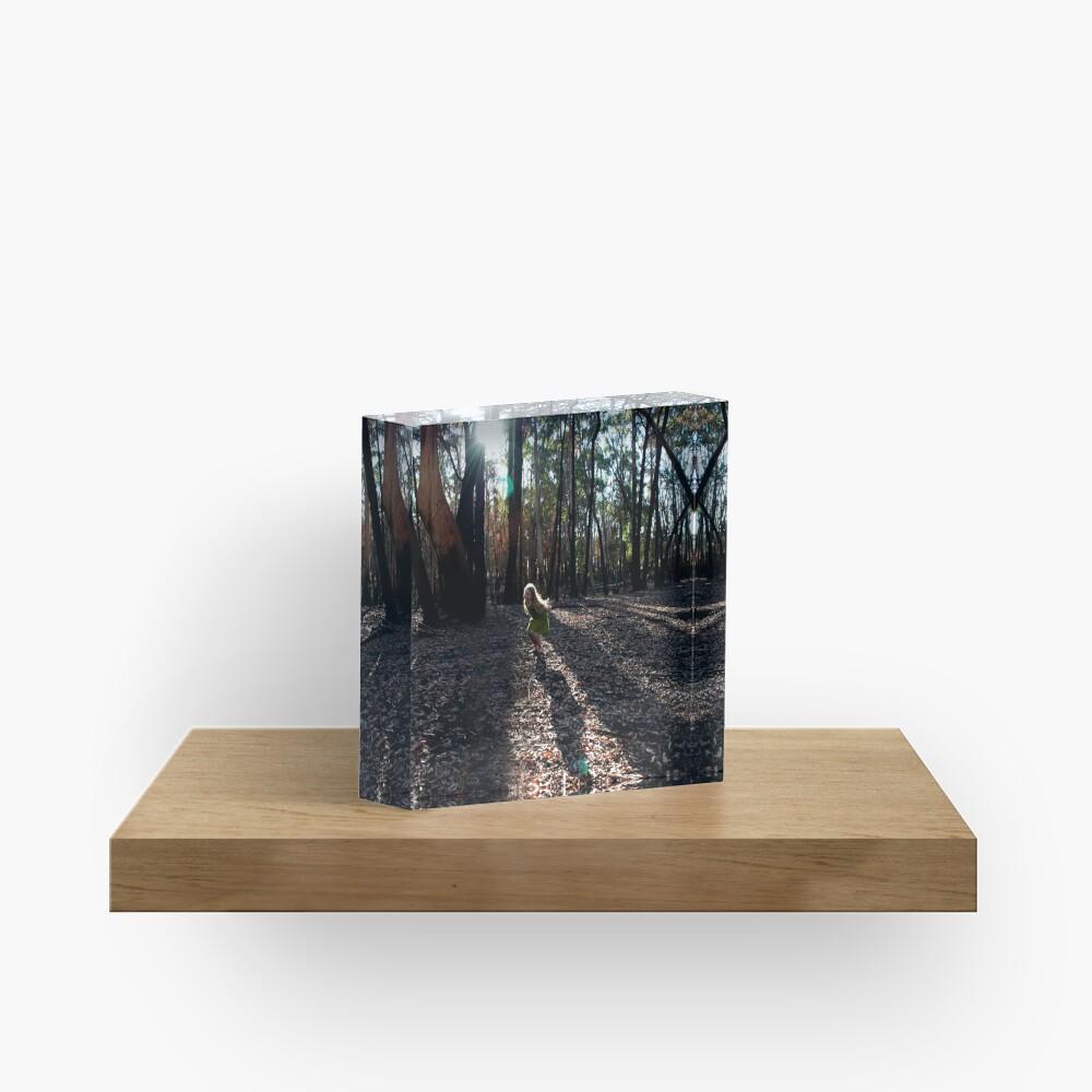 Untitled 4 Acrylic Block