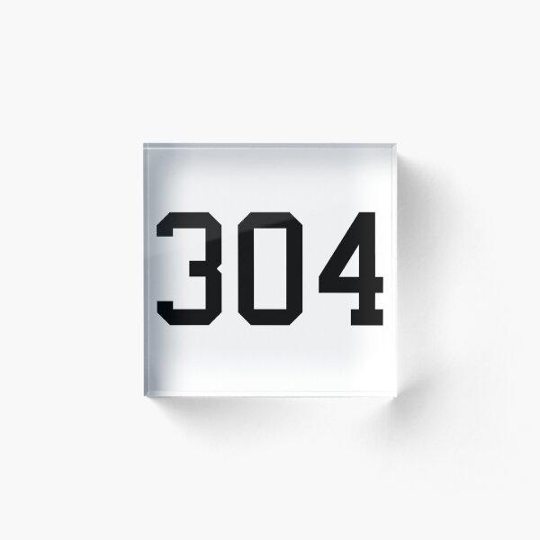 304 Acrylic Block