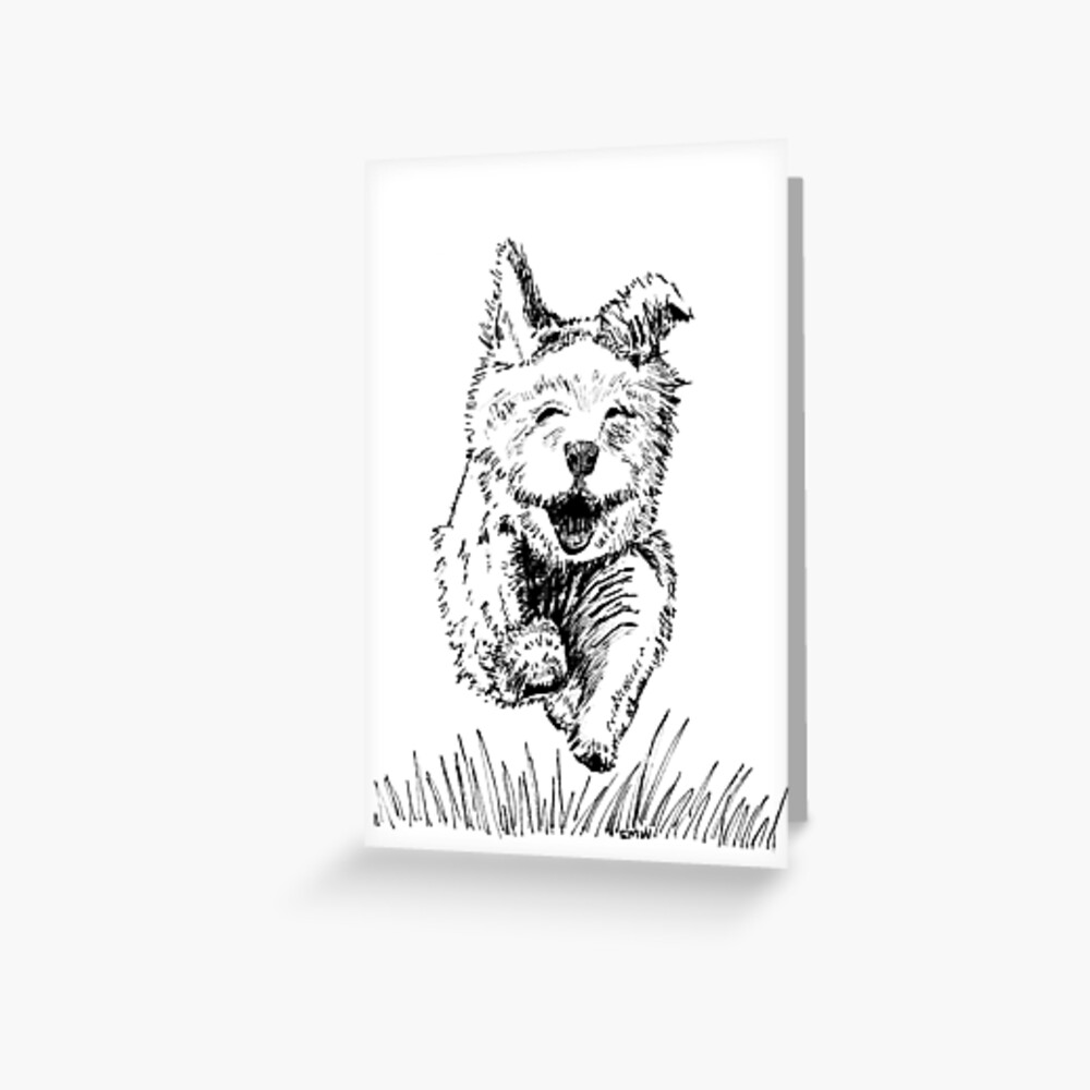 Follow your Nose Greeting Card (Blank) Greeting Card