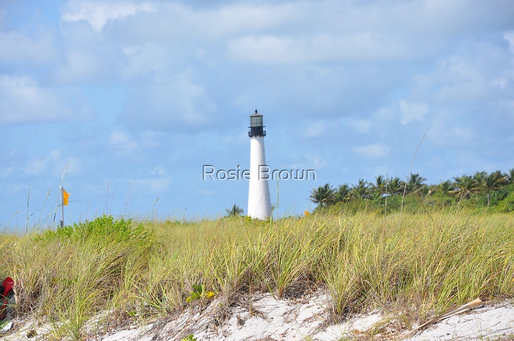 Cape Florida Lighthouse #2 by Rosie Brown