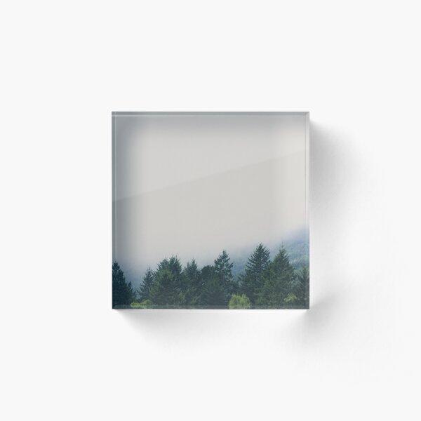 muir woods | mill valley, california Acrylic Block
