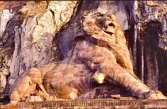 Quot The Lion Of Belfort Quot By David Davies Redbubble