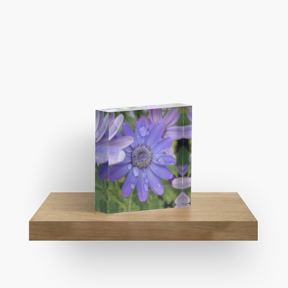 Blue Again Acrylic Block