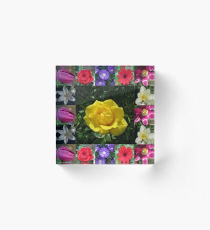 Golden Jewel Rose Collage Acrylblock