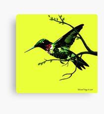 Hummingbird Highway Canvas Print
