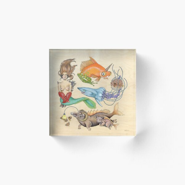 Here Fishy Fishy Fishy (Print) Acrylic Block
