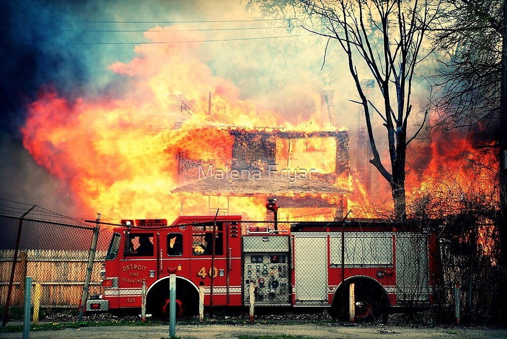 Detroit Fire Department  by Malena Fryar