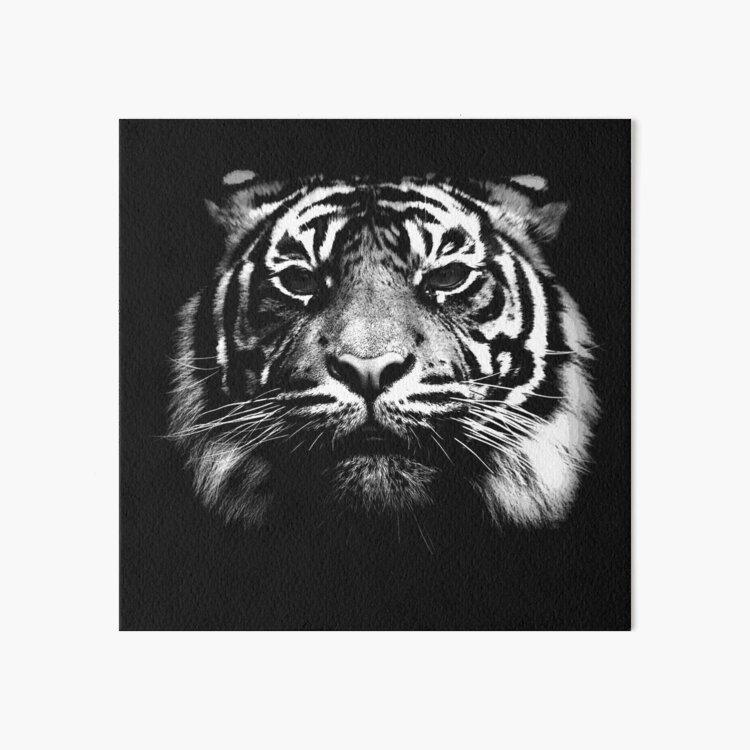 Illustrated Tiger  Art Board Print
