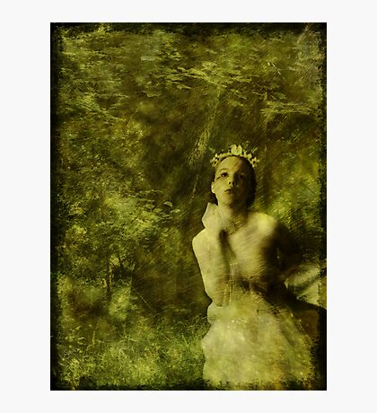 Wood Nymph Photographic Print