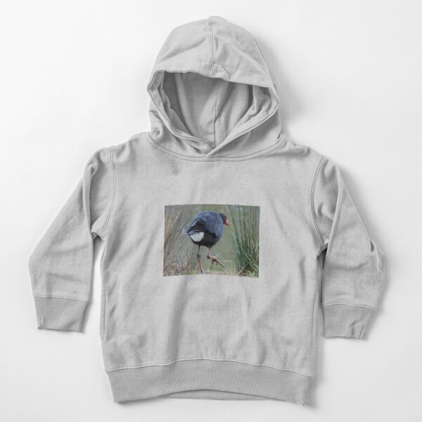 Moorhen by Avril Thomas Toddler Pullover Hoodie