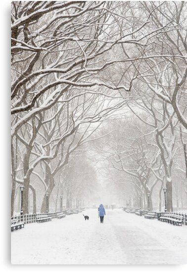 Winter in Central Park by Ellen McKnight