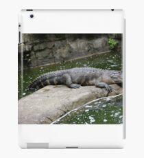Gator Day iPad Case/Skin