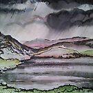 Storm over Llyn Cregennan by Martin Williamson (©cobbybrook)