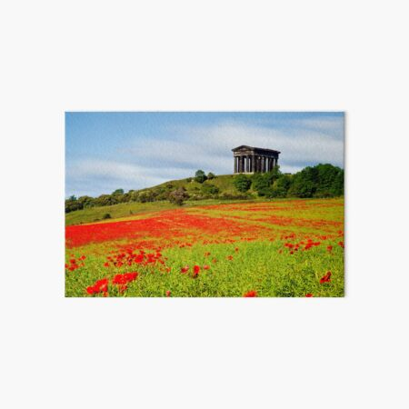 Penshaw Poppies Art Board Print