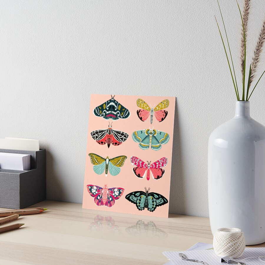 Lepidoptery No. 1 by Andrea Lauren  Art Board Print