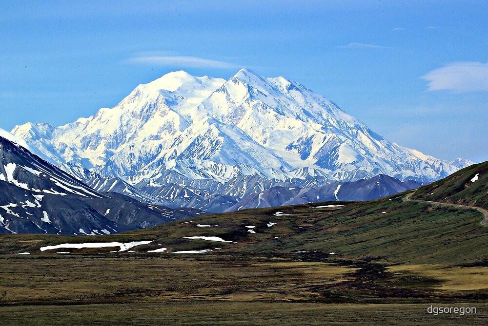 Quot Denali Mt Mckinley Alaska Quot By Donald Siebel Redbubble