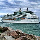 Cruise ship leaving Miami by Brian Tarr