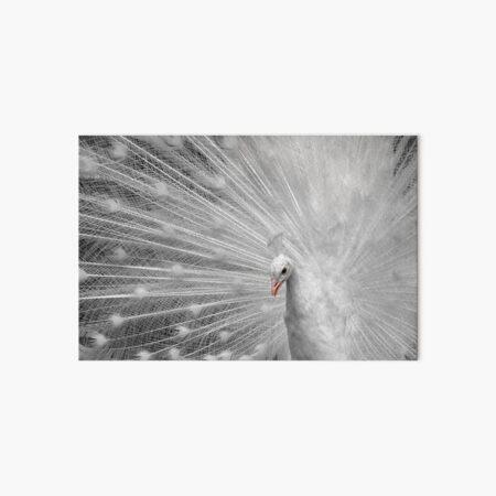 White Princess Art Board Print