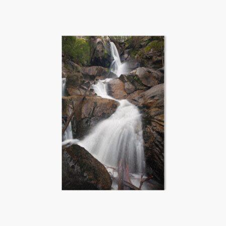Upper Toorongo Falls Art Board Print