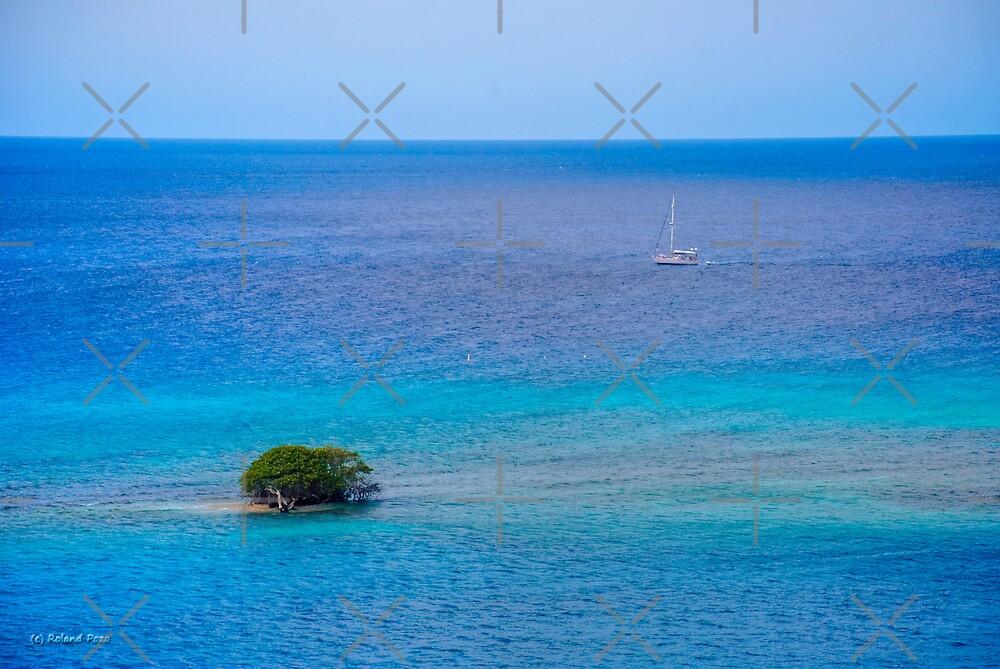 A Tree in the Sea by photorolandi