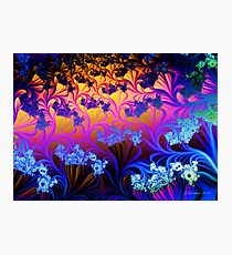 Fractal Sunset Photographic Print
