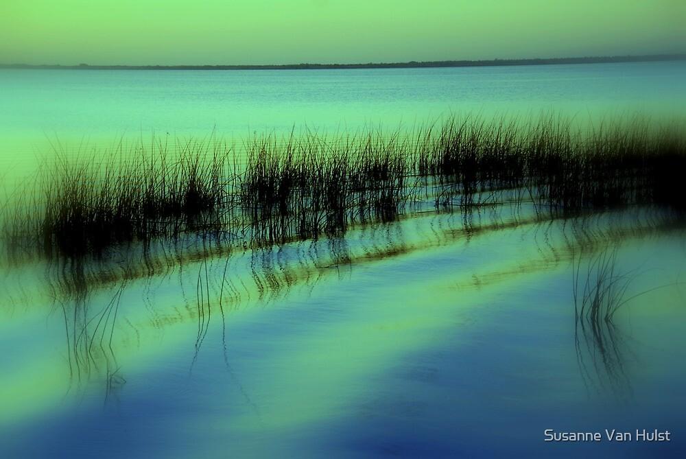 I had a Dream  by Susanne Van Hulst