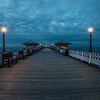 An Evening Stroll  by Darren Wilkes