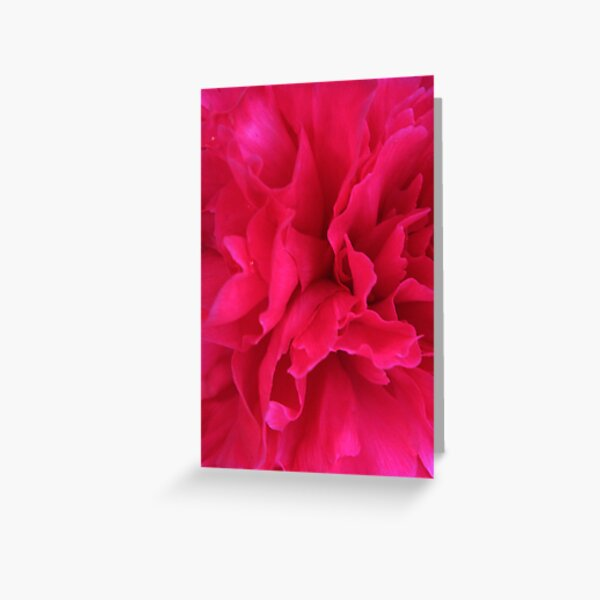 Passion Ignited Greeting Card