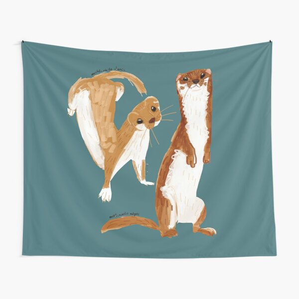 Funny Weasel ( Mustela nivalis ) Tela decorativa